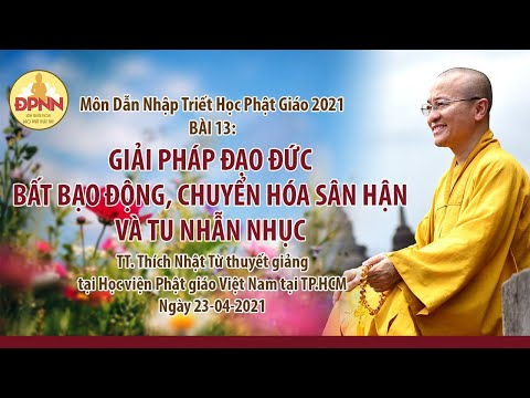 Giải pháp đạo đức bất bạo động, chuyển hóa sân hận và tu nhẫn nhịn l Dẫn nhập triết học Phật giáo
