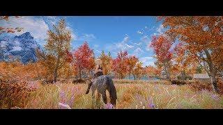 Skyrim Nov 2018 Various mods