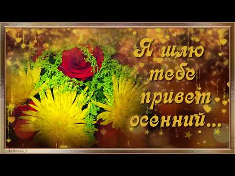 Я шлю тебе привет осенний.   I send you autumn greetings.