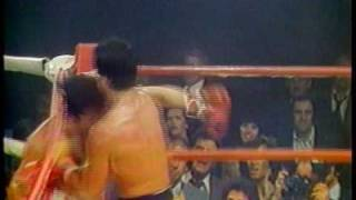 Sylvester Stallone and Frank Stallone fighting in Rocky III never seen before
