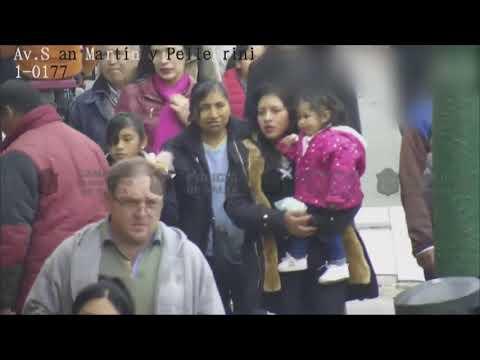 Video: Punga infraganti mientras intentaba robar a una mujer