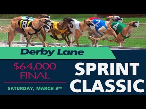 Derby Lane's 2018 Sprint Classic