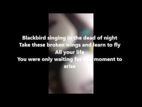 BlackBird - The Beatles Lyrics