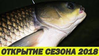 Рыбалка на сазана весной лиман курчанский