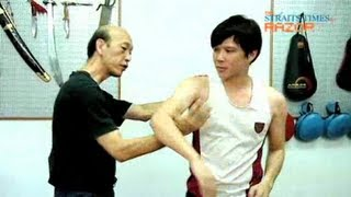 Classic Wing Chun moves (The Ip Man effect Pt 3)