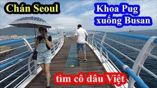 Bị phạt đi trễ - Khoa Pug mua luôn 4 vé hạng thương gia tàu cao tốc xuống Busan tìm cô dâu Việt
