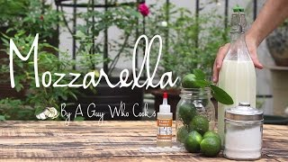 Fresh Mozzarella by A Guy Who Cooks