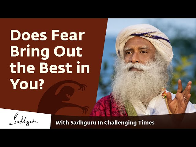 Does Fear Bring Out the Best in You? - With Sadhguru in Challenging Times - 25 Apr
