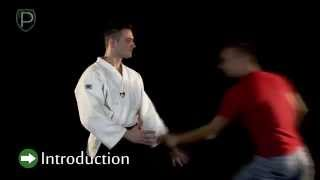 SELF DEFENSE LESSON 2.1 Both hands grab - from behind