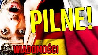 Niemcy mają dość POLSKICH ŚWIŃ! Budują MUR NA GRANICY | WIADOMOŚCI