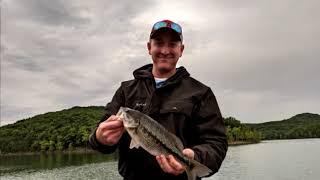 Table Rock Lake Video Fishing Report June 20, 2019
