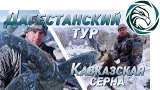 ГОРНАЯ ОХОТА В СЕВЕРНОЙ ОСЕТИИ (Dagestan Tur and Caucasian chamois)