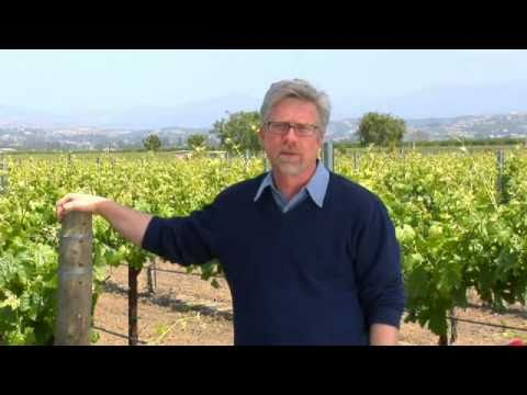 Winemaker from South Coast Winery talks about his labels