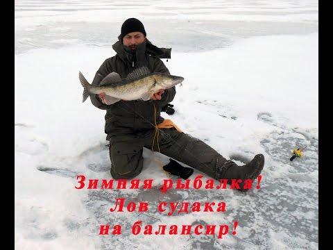 Quello che pesca