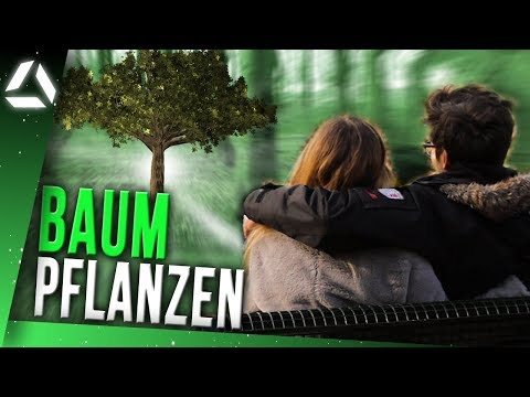 online BAUM PFLANZEN // treedom