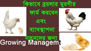 How To Start Poultry Farming In Bangladesh, Growing Management Part-4