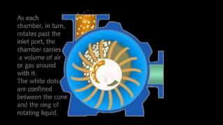 Video Nguyên lý hoạt động của bơm hút chân không vòng nước