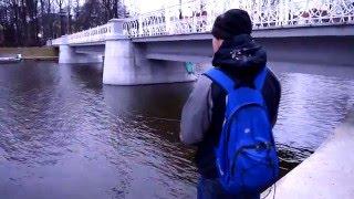 Где клюет рыба в калининградской области