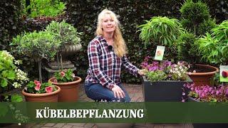KÜBELPFLANZEN - Tipps für die Bepflanzung von Balkon oder Terrasse