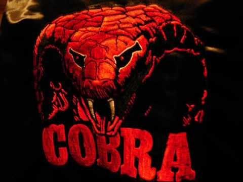Forbidden Society - Cobra