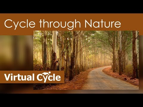 Cycle Through Nature - Virtual Cycle Experience - For Indoor Walking, Treadmill And Running Workouts