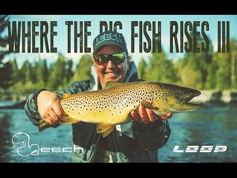 Where The Big Fish Rises III Sweden