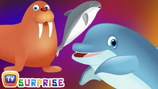 Surprise Eggs Wildlife Mammals Toys | Wild Sea Animals & Animal Sounds | ChuChu TV Surprise For Kids