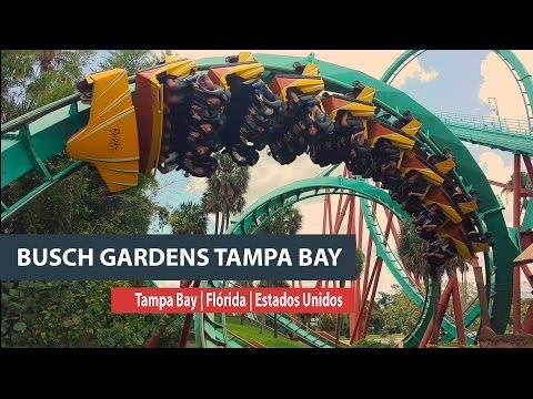 Giros, rodopios e animais no Busch Gardens Tampa