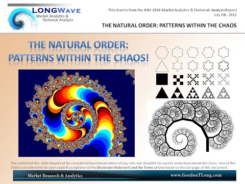 The Natural Order: Patterns Within the Chaos