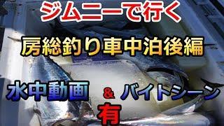 【ソウダガツオ爆釣】ジムニー釣り車中泊後編【水中動画あり】