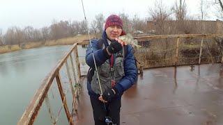 Хорошая рыбалка в ростовской области