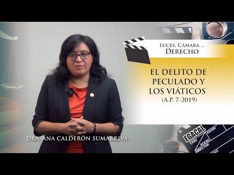 EL DELITO DE PECULADO Y LOS VIÁTICOS (A.P. 7-2019) - Luces Cámara Derecho 158