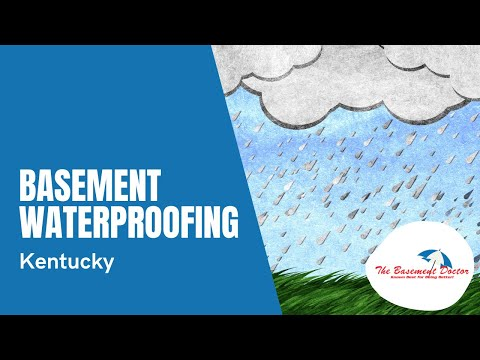 Basement Waterproofing Ad | The Basement Doctor of Central Kentucky