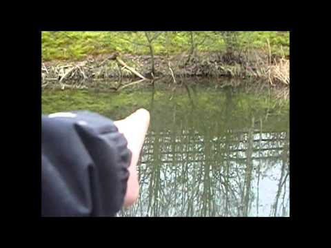 fishing on shireoaks pond with a twist