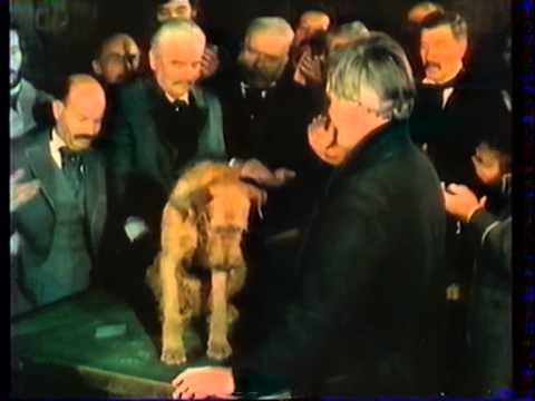 Az éneklő kutya online