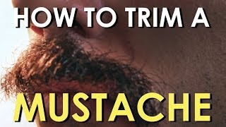 How to Trim Your Mustache   The Art of Manliness