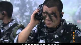 垂直打击(第20集)大结局 现代军旅剧 王新军 胡亚捷 殷桃 沙溢 高清HD