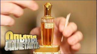Дегустаторы. Вкусовая и парфюмерная дегустация