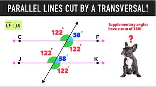 ☆ Parallel Lines Cut By Transversals | Exploring Angle Relationships