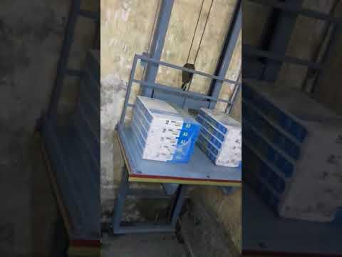 Goods Platform Lift