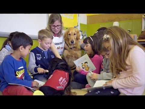 Imagen del vídeo Niños y mascotas aprendiendo juntos