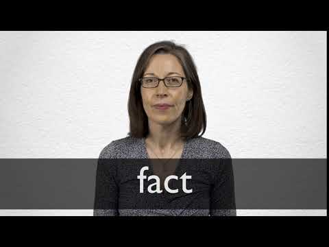 fact synonym