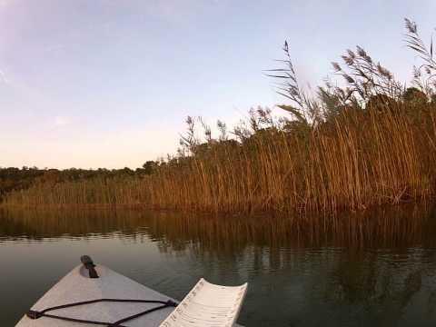 Pickerel Fishing at Oak Pond