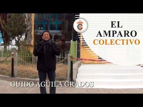 EL AMPARO COLECTIVO - Tribuna Constitucional 86 - Guido Aguila Grados