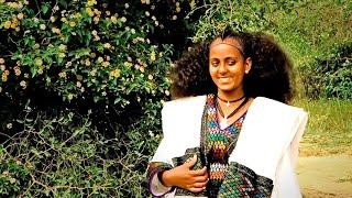 Dawit Alemayehu - Welela | ወለላ - New Ethiopian Tigrigna Music