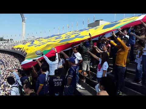"""Telón Pumas Rebel vs Veracruz Apertura 2015"" Barra: La Rebel • Club: Pumas"