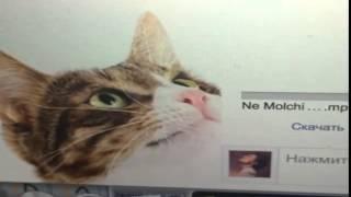 НЕ МОЛЧИ - микс 4-х видео с инста Д.Билана