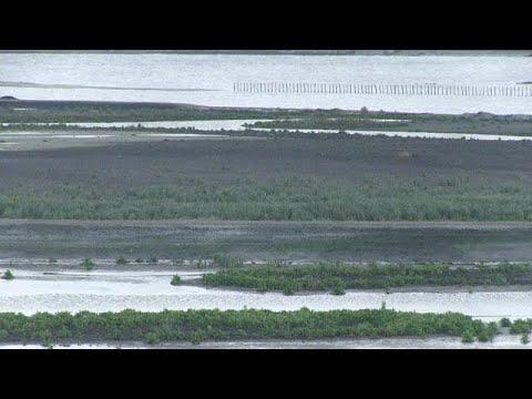 Επιστήμονες μετατρέπουν τεράστιο βάλτο σε λίμνη