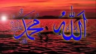 Muhammad aa jao tey Mukkh dikhla jao (by Naseer A Bhatti).flv