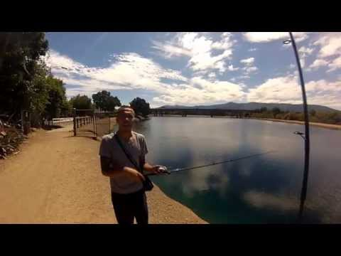 Bass Fishing in San Jose Perc Ponds